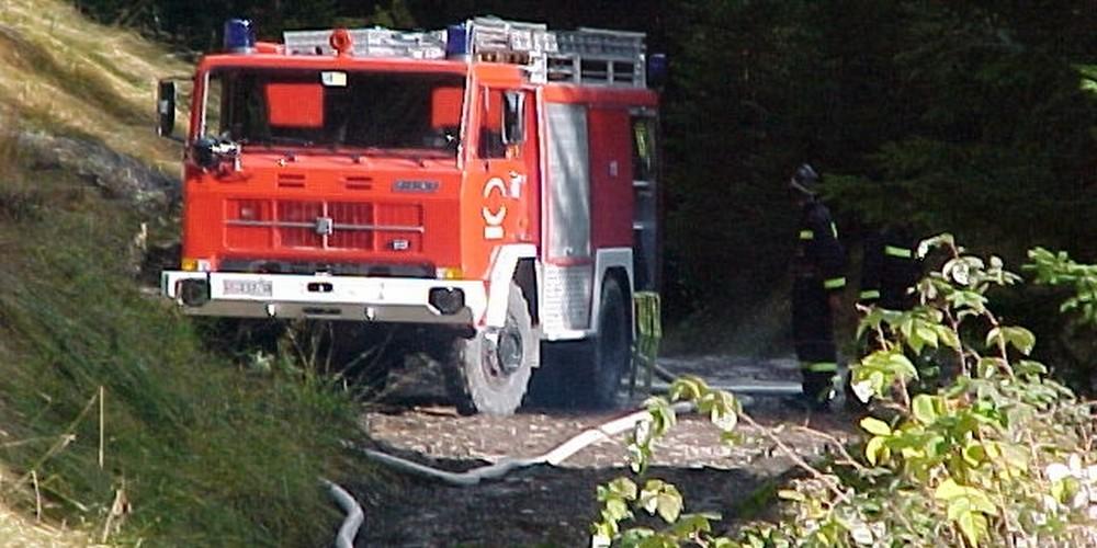 2002 Boschivo