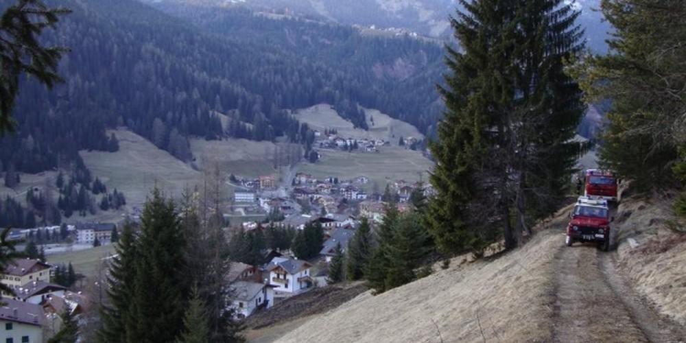 2010 Boschivo